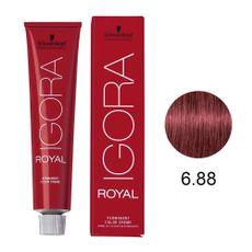 tintura-igora-royal-6.88-louro-escuro-vermelho-extra-schwarzkopf